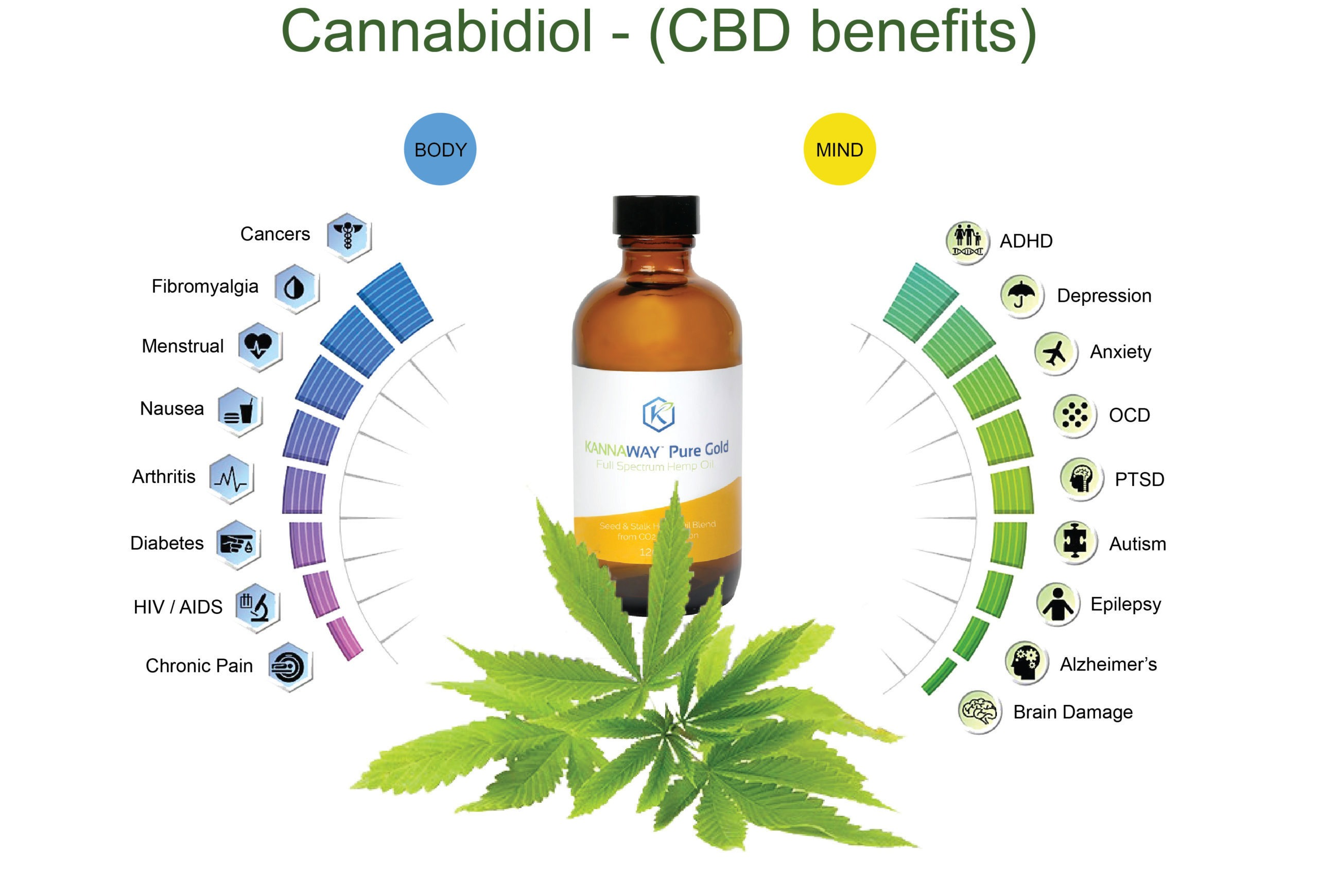CBD Oil Benefits Chart